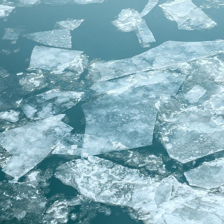 ice as a symbol of cold introductions