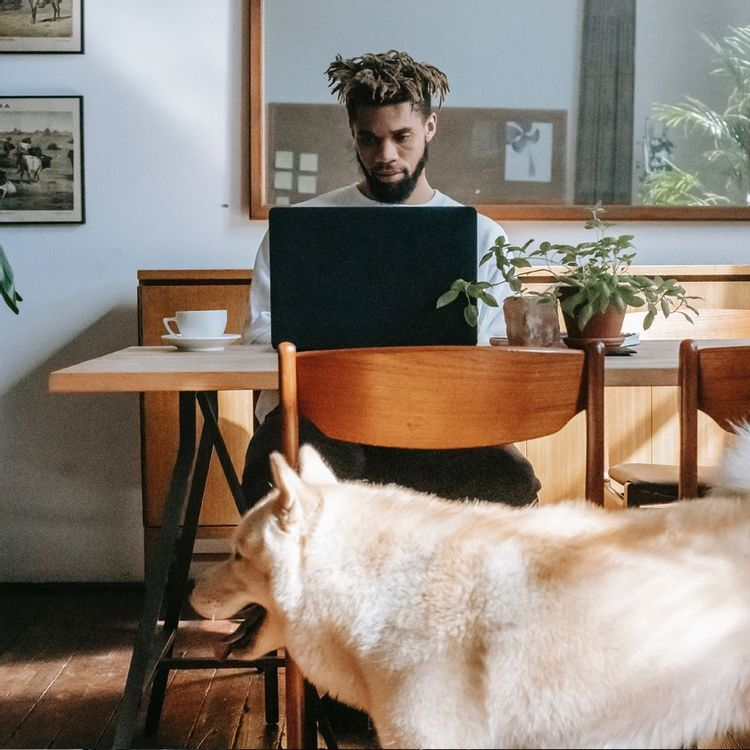 Freelancer wanting to become an entrepreneur